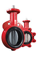 Series 30 & 31 Butterfly Valve