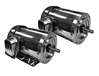 Stainless Steel TEFC Motors