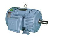Rigid Base-575 Volt Triton Series Motor
