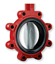 Bray Series 31H Butterfly Valves