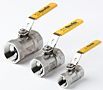 Series S20 and FS20 Ball Valves