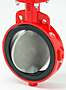 Bray Series 20/21 Butterfly Valve Image