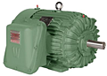 Explosion Proof Premium Efficiency Motors