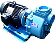 centrifugal pumps coupled to electric motors image