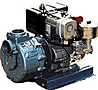 centrifugal pumps coupled to gasoline motors image