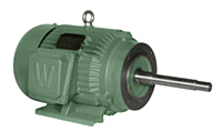 Closed Coupled Pump Motors