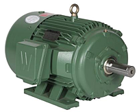 Premium Efficiency Motors