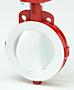 Bray Series 22/23 Butterfly Valves Image